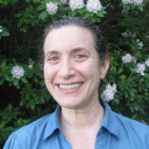 Sara Haimowitz