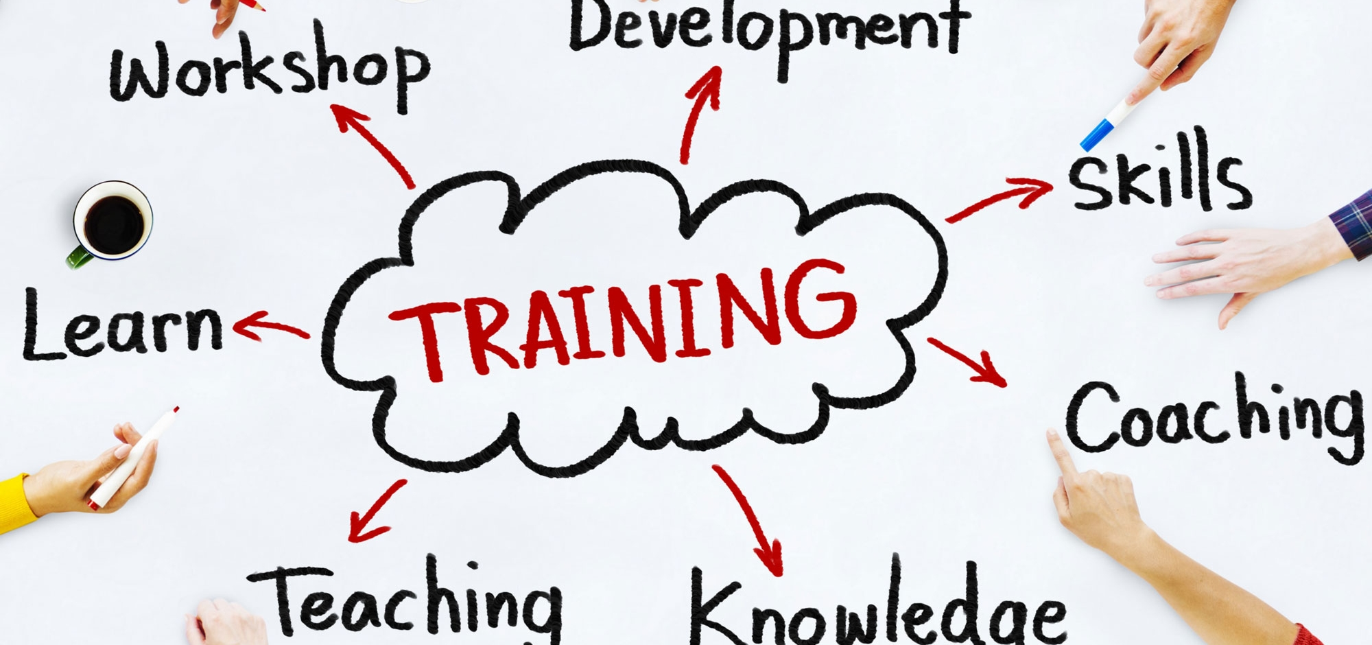 Professional Development Services & Trainings